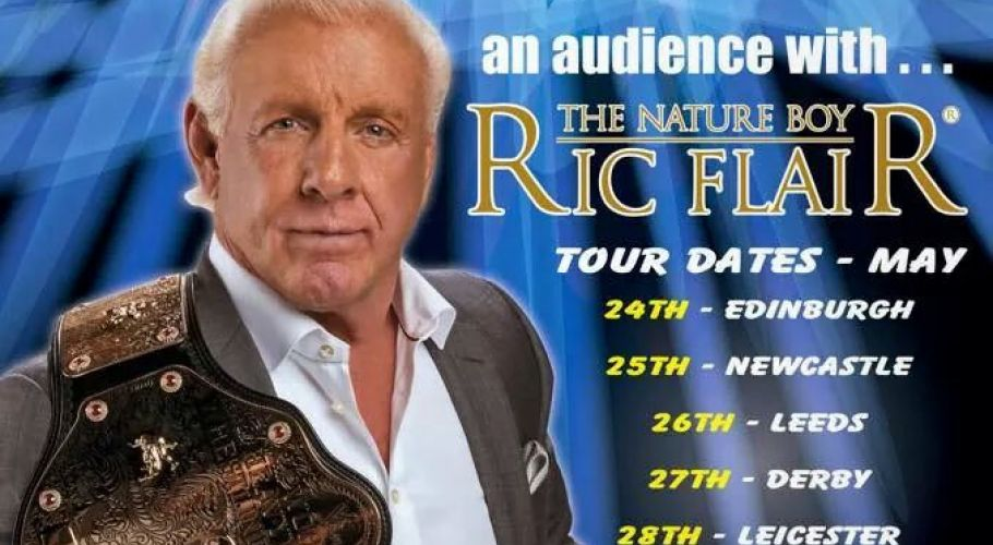 WWE Wrestling Ric Flair